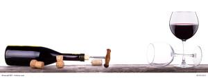 Weinseminar im Safran Gewürzbasar