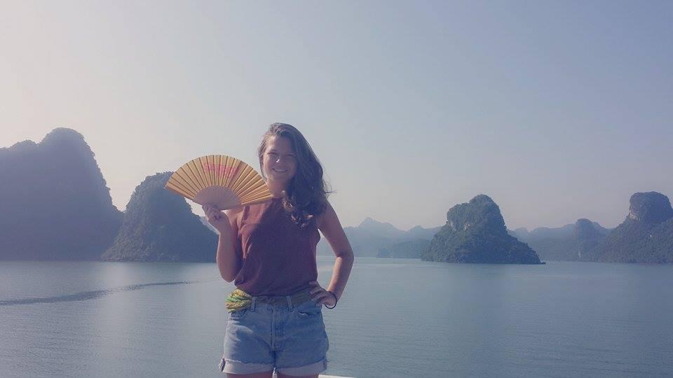 Der Safran-Fächer in Vietnam