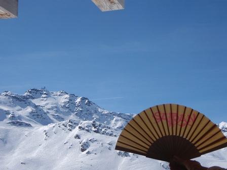 Der SAFRAN-Fächer in den Alpen