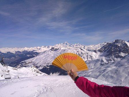 Der Safran-Fächer vor dem Mont Blanc