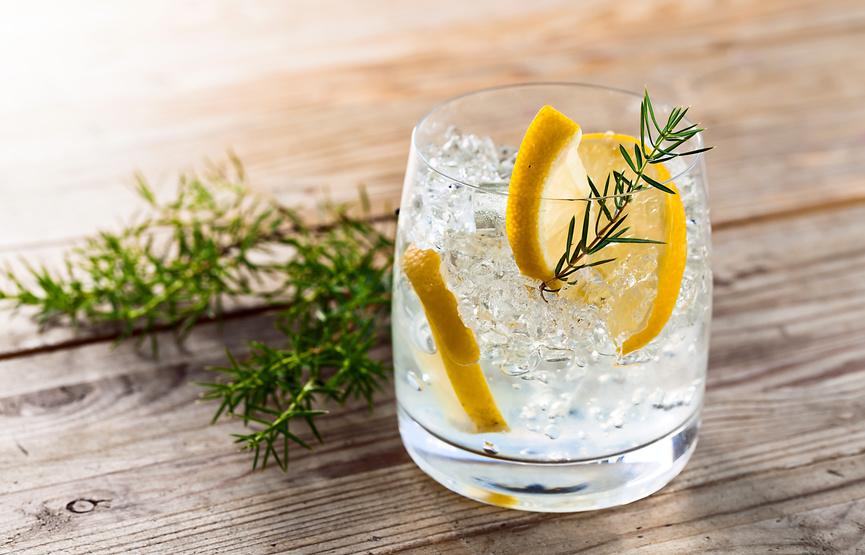 Gin Seminar im Safran Gewürzbasar